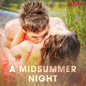 A Midsummer Night (EN)
