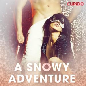 A Snowy Adventure (EN)