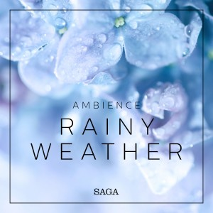 Ambience - Rainy Weather (EN)