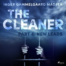 The Cleaner 4: New Leads (EN)