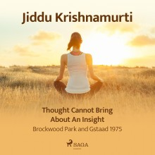 Thought Cannot Bring About an Insight – Brockwood Park an...