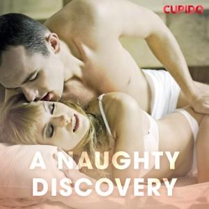 A Naughty Discovery (EN)