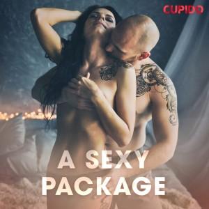 A Sexy Package (EN)