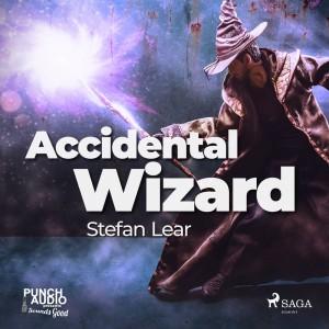 Accidental Wizard (EN)